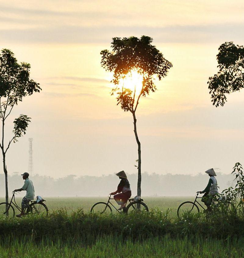 Cycle Indochina